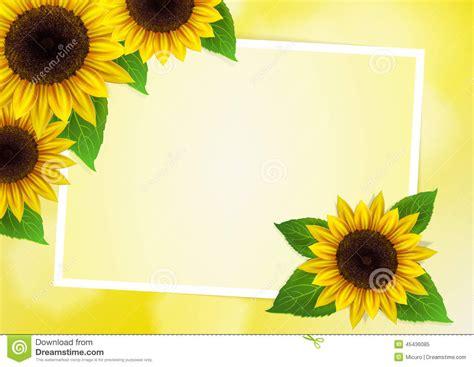 sunflowers vector background stock illustration image