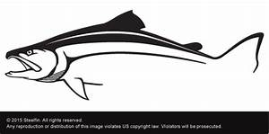 Image Gallery salmon decals