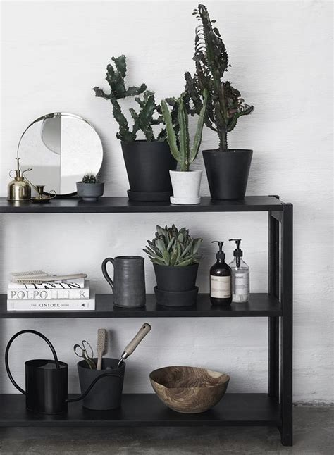 10 Ways Work Cactus Trend by 9 Ways To Work The Cactus Trend Home Sweet Home