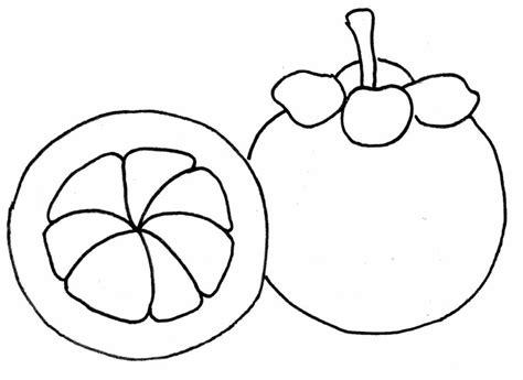 20 sketsa gambar buah