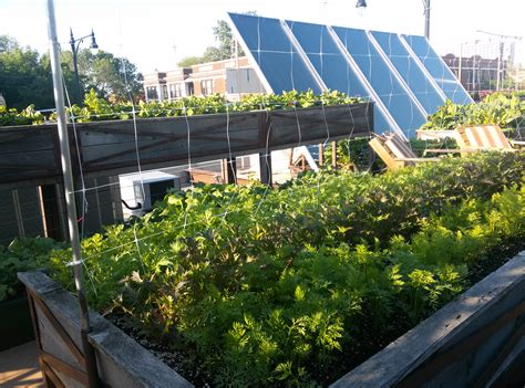 rooftop landscape rooftop vegetable garden ideas rooftop vegetable garden ideas interior exterior doors best