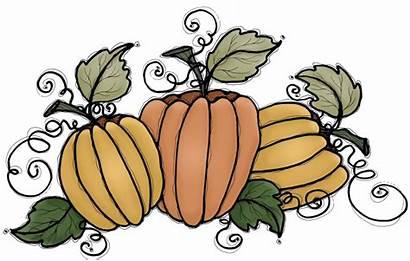 Pumpkin Clip Pie Patch Pumpkins Perdu Coin