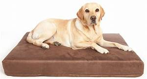 the benefits of memory foam dog beds for hip dysplasia With best dog bed for hip dysplasia