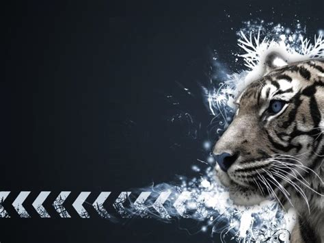 Cool Car Wallpapers For Desktop 3d Animal by White Tiger Backgrounds Wallpaper Cave