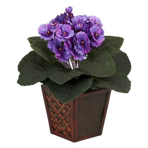 african violet pot plant vase silk desk nearly natural piece inch plants popscreen