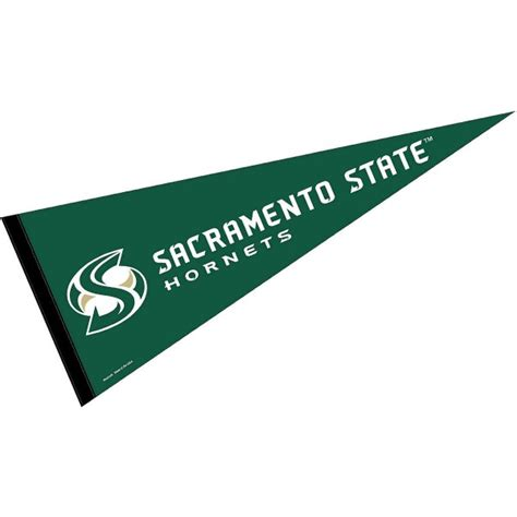 college of business forms sac state sac state hornets college pennant and college pennants for