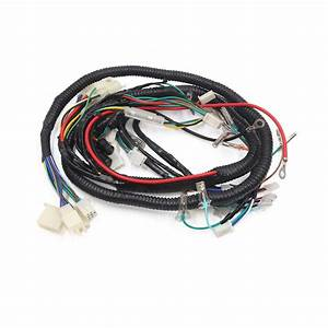 Female Motorcycle Electrical Scooter Main Wiring Harness