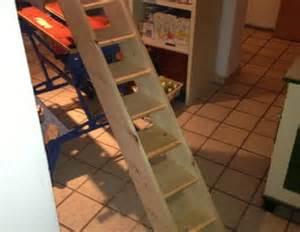 katzentreppe balkon kaufen katzentreppe bauanleitung zum selber bauen heimwerker forum