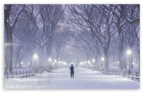 Central Park Winter Iphone Wallpaper by Central Park New York City Winter Background 4k Hd