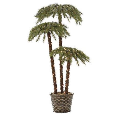 palm tree christmas tree lowes lighted palm living 6 potted caribbean palms 8597