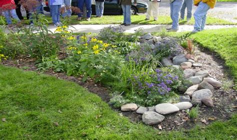 rain gardens tualatin soil  water conservation district