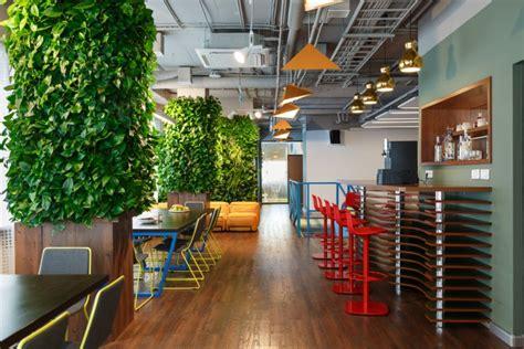 quelles plantes sans entretien choisir pour vos bureaux