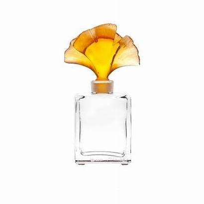 Flacon Parfum Daum Ginkgo Perfume Ambre Bottle