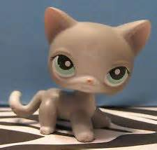 lps gray shorthair cat lps shorthaired cats on littlest pet shops