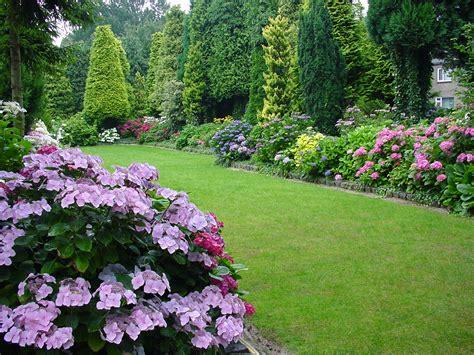 hydrangea garden design image gallery hydrangea garden design