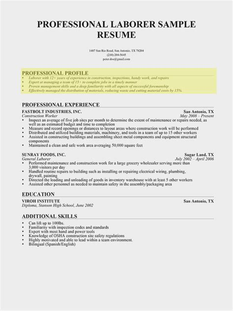 How To Write A Professional Summary For A Resume by 13 Common Myths About Profile Summary In Resume Information