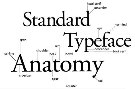 design practice ougd505 design practice 2 typography workshop 1 with graham