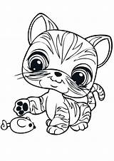 Coloring Pet Cat Littlest Toy Printable Grocery Lps Coloring4free Cats Shorthair Pets Getcolorings Template Colouring Sheet Sheets Related Cartoon Games sketch template