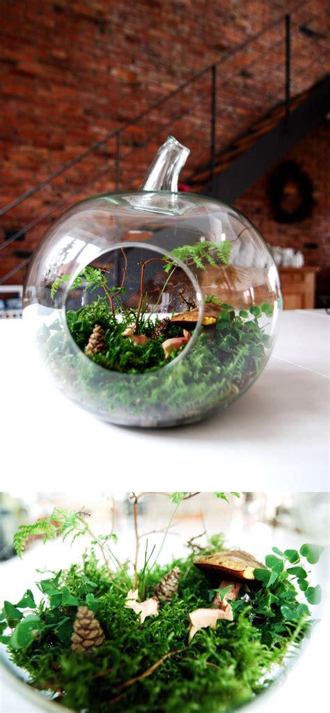 Mein Garten Im Glas  Leelah Loves