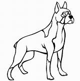 Boxer Coloring Dog Puppy Getdrawings sketch template