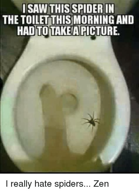 I Saw A Spider Meme - 25 best memes about spider in the toilet spider in the toilet memes
