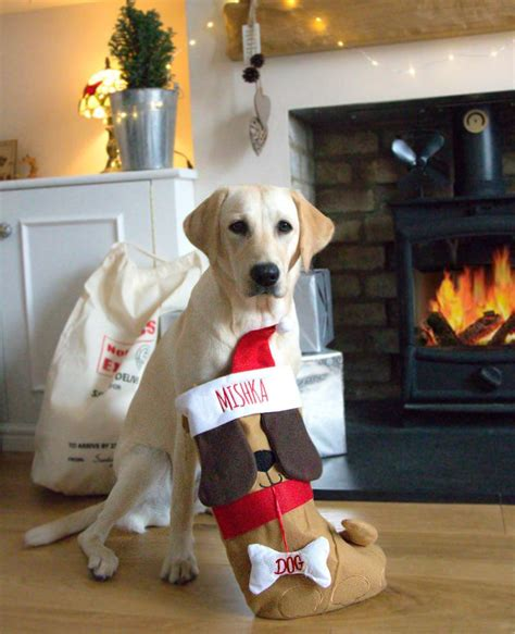 personalised dog christmas stocking withcongratulations
