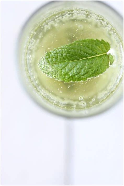 25 best ideas about sirop de menthe maison on alcool de menthe recette sirop de