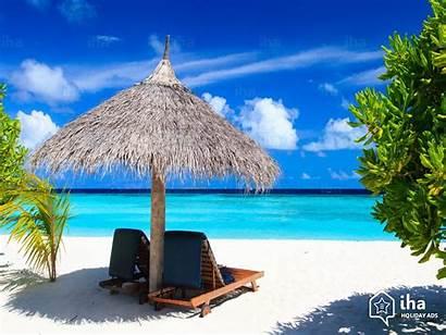 Island Cat Holiday Vacation Rentals Iha Holidays