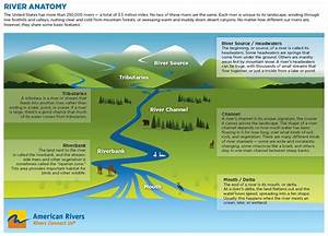 River Diagram Showing The Components Of A River  Including