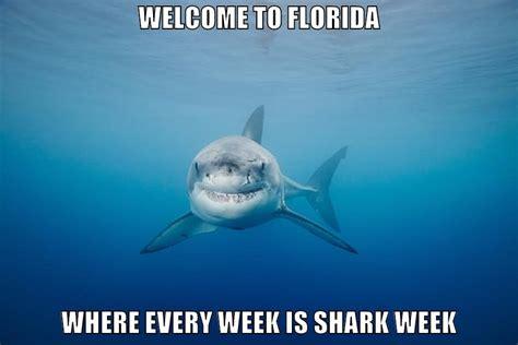 Meme Shark - funny shark week memes