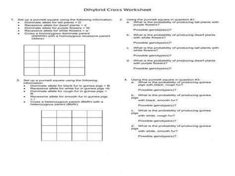 Dihybrid Crosses Worksheet Homeschooldressagecom