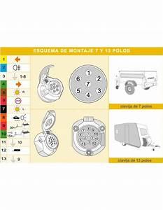 Conector 7 Pin Remolque