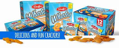 Crackers Baked Cheese Animal Whales Snack Stauffer