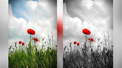 what is a spot color photoshop tutorial spot color b w