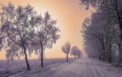Winter Snow Road Background Trees Fog 4k