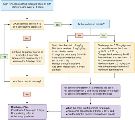 Neonatal Abstinence Syndrome State Of The Art Review