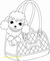 Coloring Pages Skirt Getcolorings Poodle sketch template