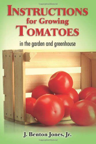 how to grow delicious tomatoes how to grow tomatoes juicy and delicious
