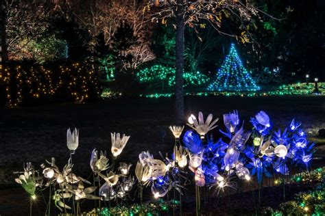 lewis ginter festival of lights 11 places in virginia to visit this season