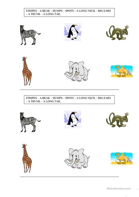 animals body parts worksheet  esl printable