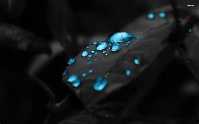 Water Drop Drops Turquoise Dew Computer Macro