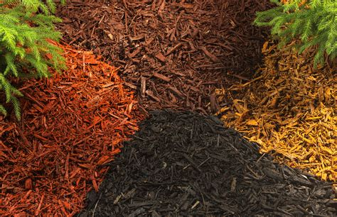 how to choose the mulch for your garden garden