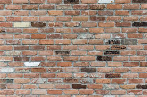 blue backsplash kitchen 1000 brick wall photos pexels free stock