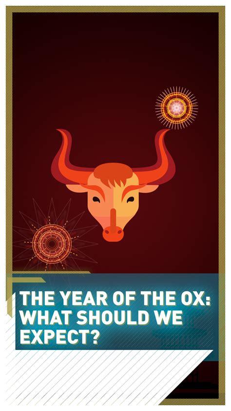 year   ox    expect cgtn