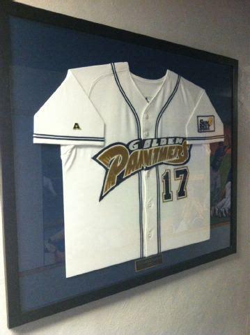jerseys  fiu baseball walls  fame fiu panthers prowl