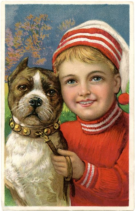 christmas picture adorable boy  dog