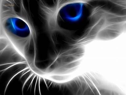 Wallpapers 3d Desktop Cat Animals 5d Abstract