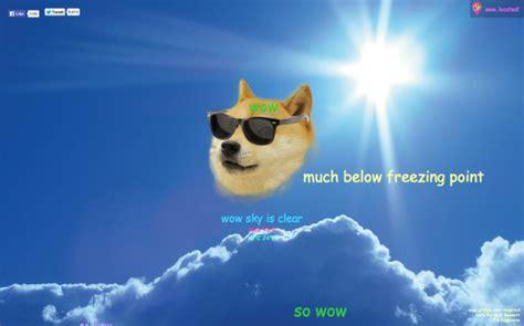 dear doge   spring break      blog