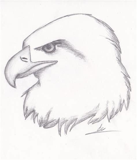 cool easy animal drawings