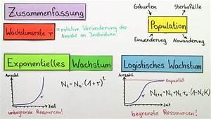 Exponentielles Wachstum Wachstumsfaktor Berechnen : wachstum von populationen biologie online lernen ~ Themetempest.com Abrechnung